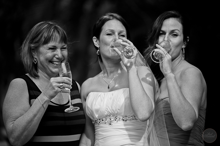 the bride toast with family